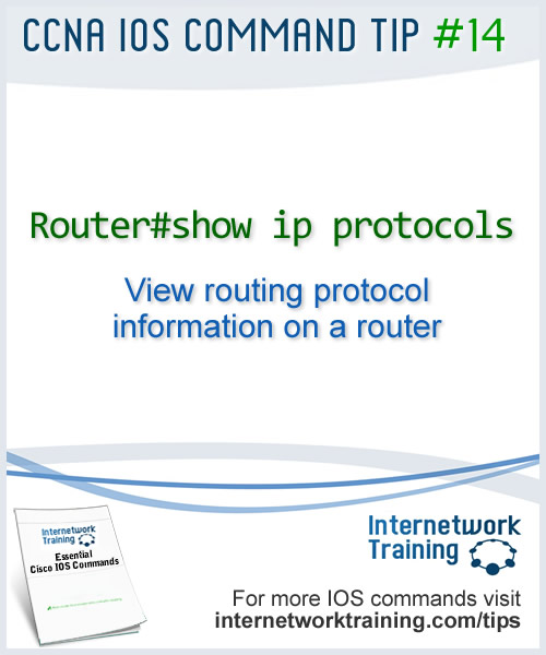 IOS commands to view routing protocol information on a Cisco router